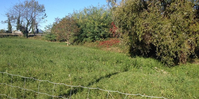 Beautiful plot of land for sale, for residential purpose