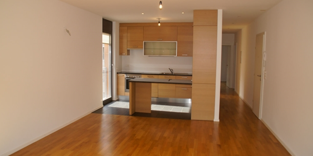 3.5 Apartment, recently renovated, comfortable and practical